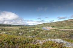 Tundra τοπίο στοκ φωτογραφίες