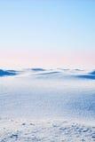 tundra στοκ εικόνες
