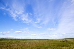 Tundra Royalty Free Stock Photography