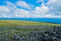 Tundra Stock Images