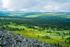 Tundra Royalty Free Stock Photo