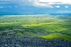 tundra στοκ φωτογραφία