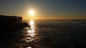 tundra Foto de Stock