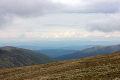 tundra royalty-vrije stock afbeelding