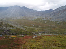 Tundra. The valley, river, mountain. Different colors Royalty Free Stock Photography
