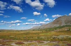 tundra στοκ εικόνες με δικαίωμα ελεύθερης χρήσης