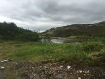 tundra royalty-vrije stock afbeeldingen