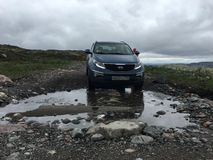 tundra royalty-vrije stock foto