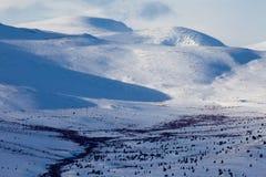 Tundra alpestre en invierno foto de archivo libre de regalías