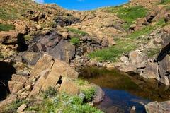 Tundra alpina rochosa com córrego e lagoa Fotos de Stock Royalty Free