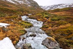 Tundra biome in Norway Stock Photo