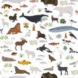 Tundra biome. Terrestrial ecosystem world map. Arctic animals, birds, fish and plants seamless pattern design royalty free illustration