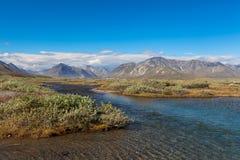 Tundra colorida delante del río y de las montañas, Rusia Imagen de archivo libre de regalías