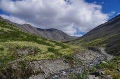 Tundra da montanha com os musgos e as rochas cobertos com os líquenes, montanhas acima do círculo ártico, península de Hibiny de  Fotos de Stock Royalty Free