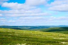 Tundra de la montaña Fotografía de archivo