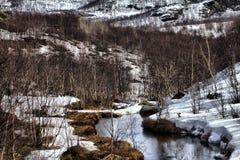 Tundra de la montaña de Laponia en primavera Extensión nevada y abedul traviesos Fotografía de archivo libre de regalías
