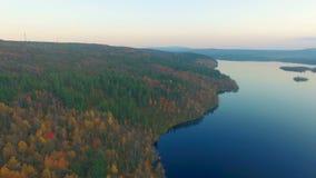 Tundra del otoño almacen de metraje de vídeo