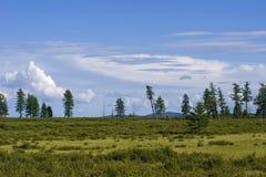 Tundra della montagna Fotografia Stock