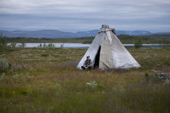 Tundra 3 della Norvegia Fotografie Stock