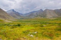 Tundra in den subpolaren Urals mit Ansichten der Berge auf dem Horizont Lizenzfreies Stockfoto