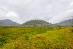 Tundra in den subpolaren Urals mit Ansichten der Berge auf dem Horizont Lizenzfreies Stockbild