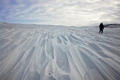 Tundra innevata. Fotografia Stock Libera da Diritti