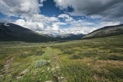 Tundra krajobraz w Północnym Szwecja obrazy stock