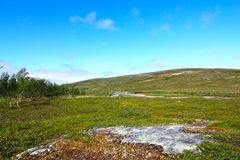 Tundra Landscape Royalty Free Stock Photography