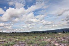 Tundra Landscape Royalty Free Stock Images