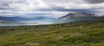 Tundra-Landschaft Stockbilder