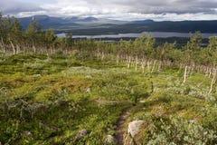 Tundra-Landschaft Stockfotografie