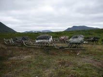 Tundra, montañas, cielo nublado y pulk nativo Imagen de archivo