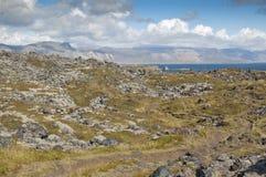 Tundra next to coast Royalty Free Stock Image