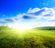 Tundra in north montain Royalty Free Stock Images