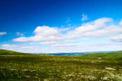 Tundra north of Russia Stock Photos