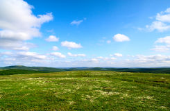 Tundra north of Russia stock images