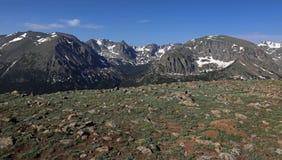 Tundra och berg royaltyfri bild