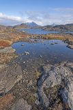 Tundra ponds and Mountains in the arctic stock images