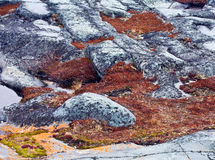 The tundra soil Royalty Free Stock Images