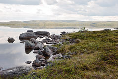 In the tundra. Stone shore of the lake in the Arctic tundra Royalty Free Stock Photos