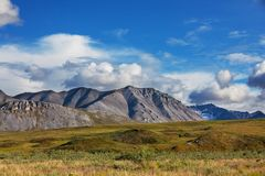 Tundra sull'Alaska fotografia stock