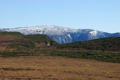 Tundra w Eurasia, jesień, śnieg zdjęcia stock