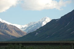 Tundra Wilderness Alaska Denali Stock Images