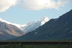 Tundra-Wildnis Alaska Denali Stockbilder