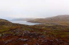 Tundralandskap med det Baretcevo havet arkivfoto