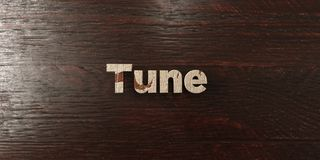 Tune - grungy wooden headline on Maple  - 3D rendered royalty free stock image. This image can be used for an online website banner ad or a print postcard Royalty Free Stock Image