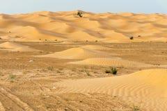 Tunecino Sahara Desert Dune Background fotografía de archivo libre de regalías