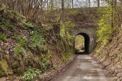 Tunel kolejowy wiadukt blisko wioski Karba Machuv kraju regionu podczas wiosna czecha Obrazy Stock