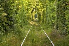 Tunel miłość Zdjęcia Royalty Free