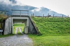 Tunel pod linią kolejową z zieloną trawą w jesieni Szwajcaria obrazy stock